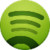 Spotify Play Store Icon